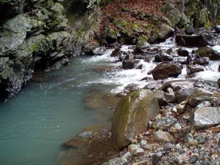 夏井川水系