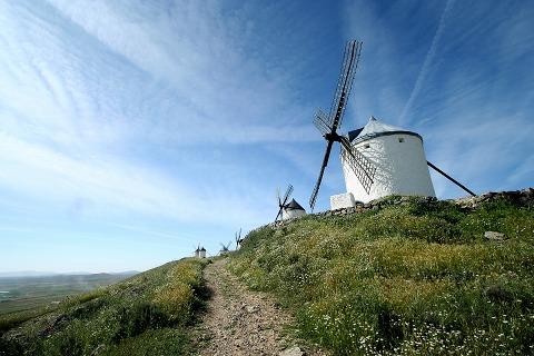 白い花と青い空と風車(コンスエグラ)