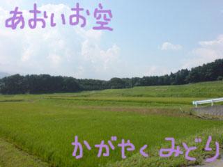 20080810202451.jpg