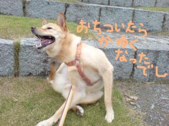 20080820170819.jpg