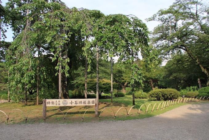 20110703IMG_0391.jpg