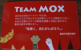 20090719team mox