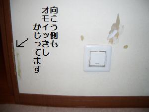 012_convert_20090322202357_20090322211410.jpg