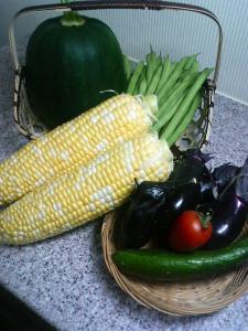 20080724お野菜達。