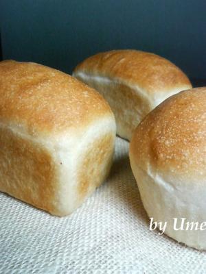 20080728梅酵母パン