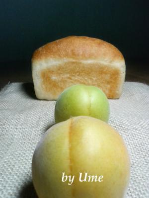 20080728梅酵母パン11