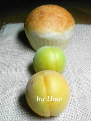 20080728梅酵母パン.202jpg
