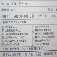 IMG_0013_convert_20110908221017.jpg