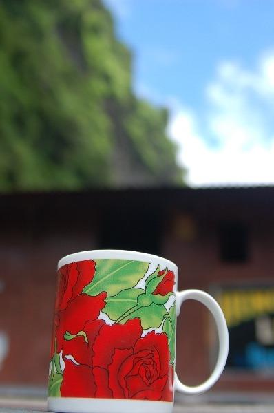 15_nepal_himalaya_091.jpg