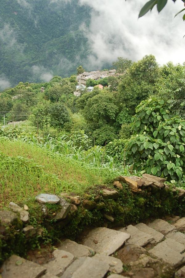 15_nepal_himalaya_120.jpg
