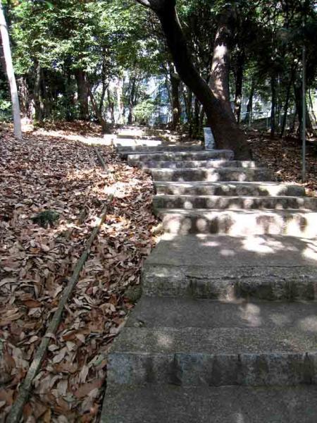 参道坂大学坂の間の石段