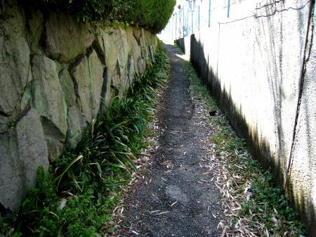 平針の建物脇の小道