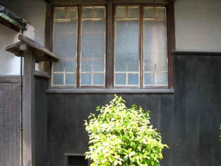 窓とグリーン