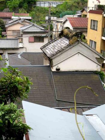 我善坊谷坂 草の生えた屋根