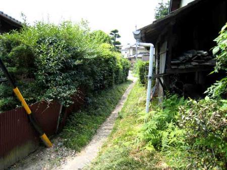 家の間の草むら路地