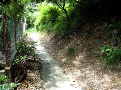 近竜泉寺くの細い坂