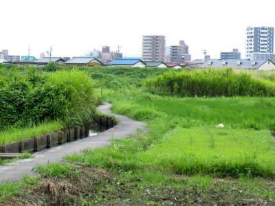 田んぼの中のS字細道