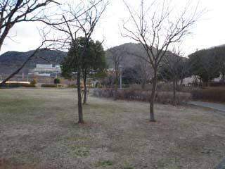 桃の木台公園03