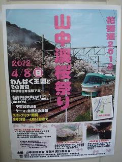 ◎泉州の桜祭りは『さくら』から