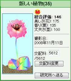 竜北植物園081111