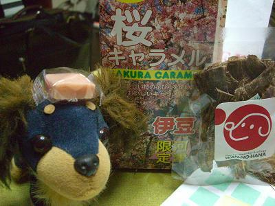 桜キャラメル