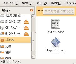 20090207_USB_Virus_Infected.jpg