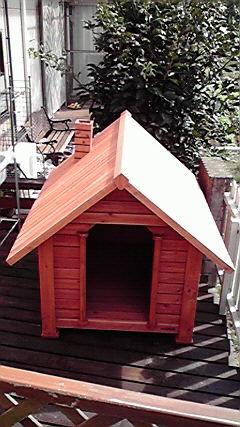犬小屋完成!
