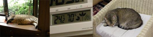 気温25度