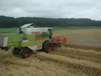 上美生集団では、2台セットで小麦刈りしてます このほかにもあと2台、合計4台コンバインが配置されてます