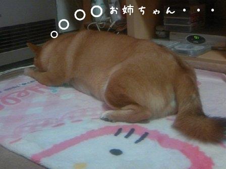 PAP_0000-1.jpg
