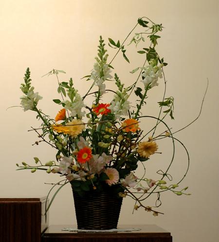 arenji2011122-1.jpg
