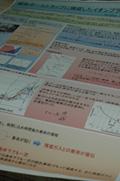 poster2011217.jpg