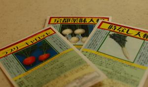 seed2011121.jpg