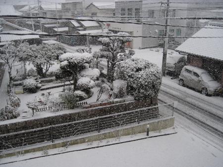 snow2011212a.jpg