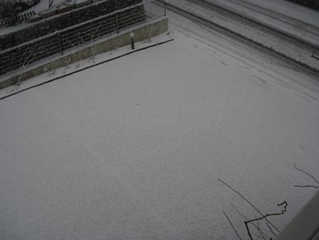 snow2011212b.jpg