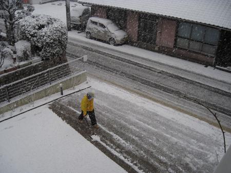 snow2011212c.jpg