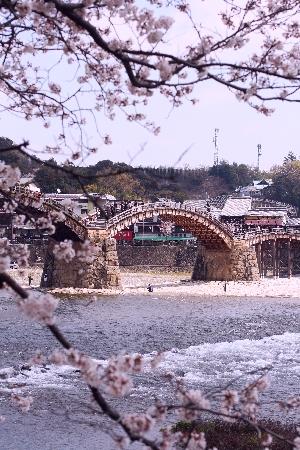 錦帯橋00
