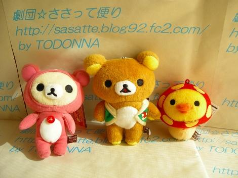 DSCN7953-s.jpg