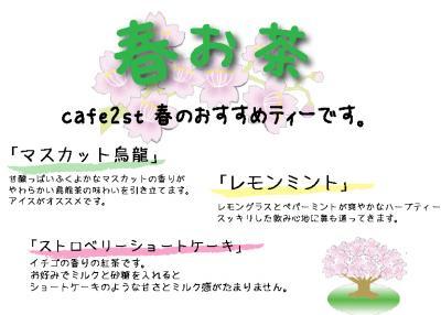 2009春お茶