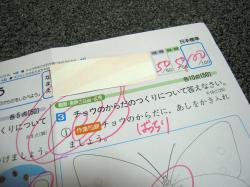 DSCN0033_convert_20080718164336.jpg