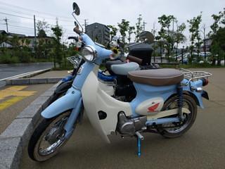 sekijukucub004.jpg