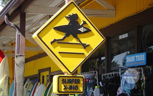 SDURFER X=ING