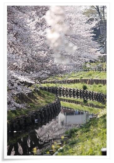 2011-04-13 小江戸~新河岸川~江戸 (8)