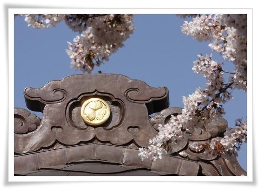 2011-04-13 小江戸~新河岸川~江戸 (9)