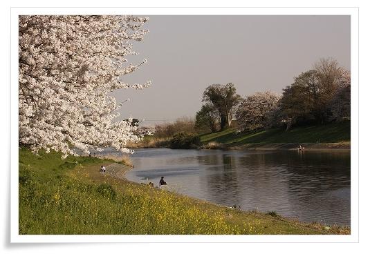 2011-04-13 小江戸~新河岸川~江戸 (21)