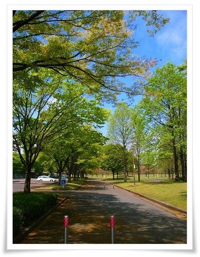 2011-04-20 川越水上公園 042