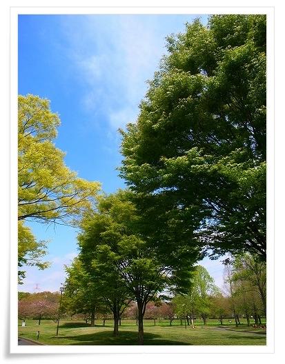 2011-04-20 川越水上公園 044