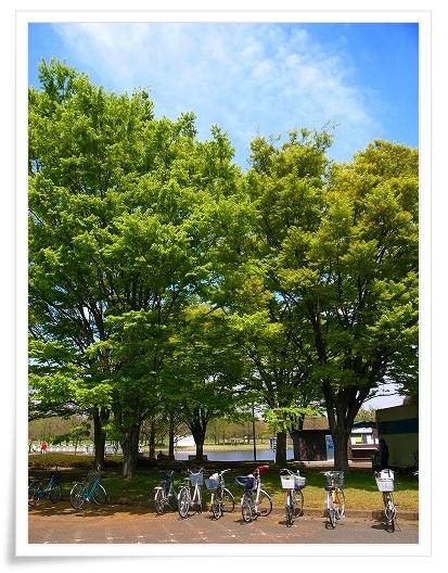 2011-04-20 川越水上公園 023