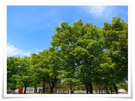 2011-04-20 川越水上公園 020