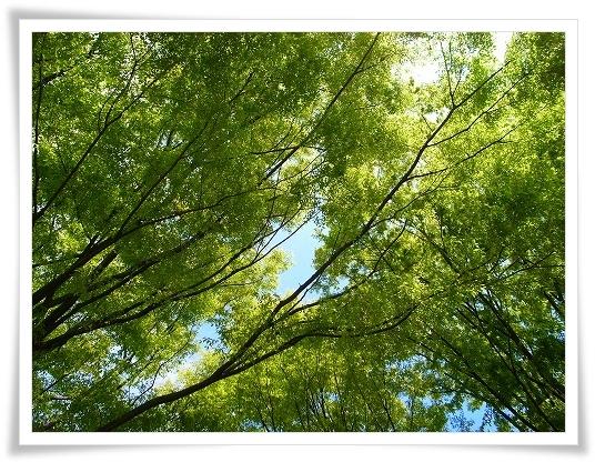 2011-04-20 川越水上公園 026